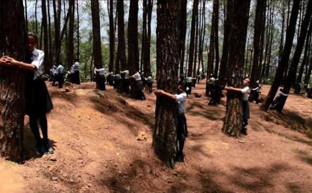 estudiantes-que-abraza-el-arbol-en-katmandu